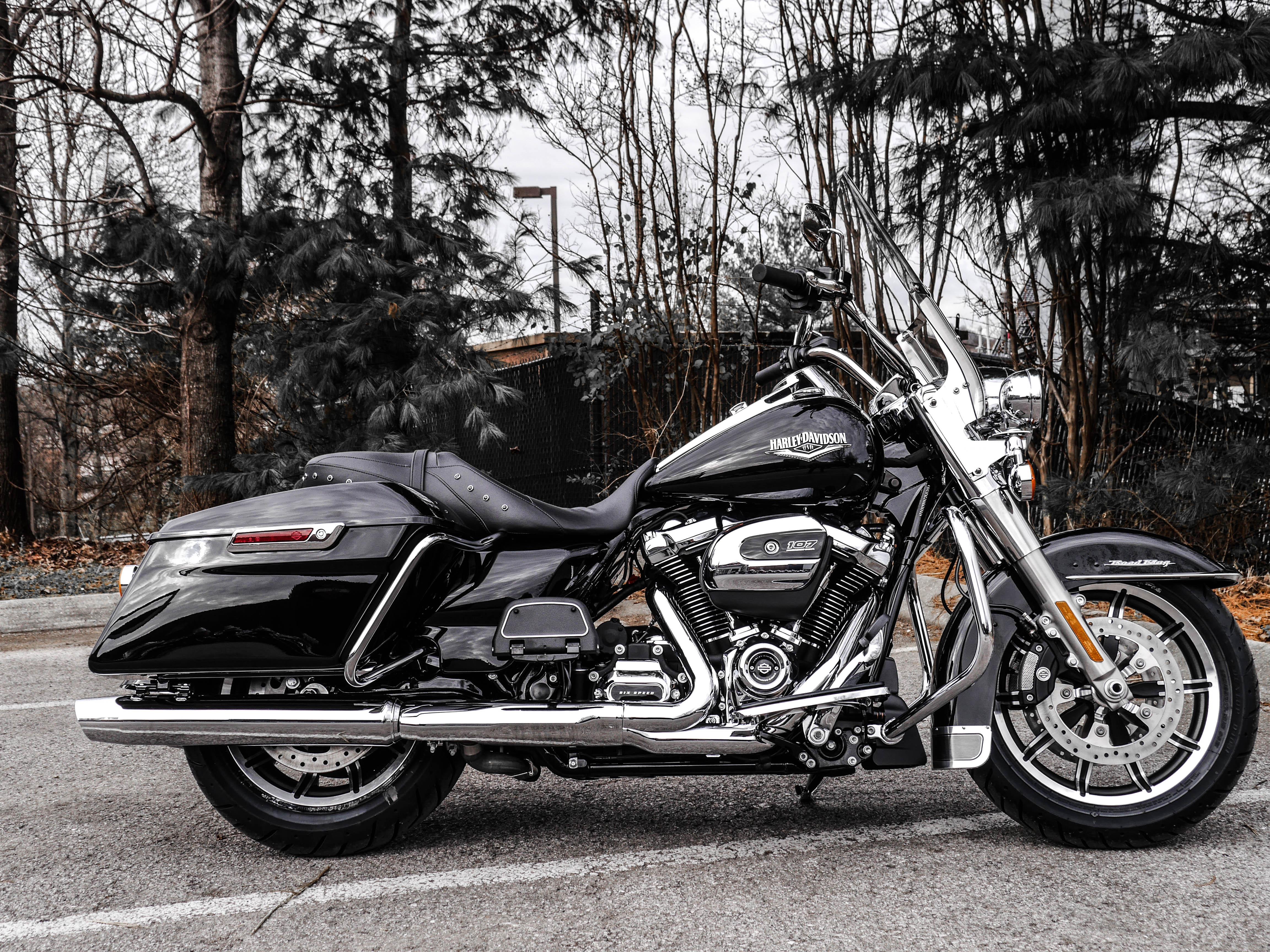 New 2019 Harley-Davidson Touring Road King