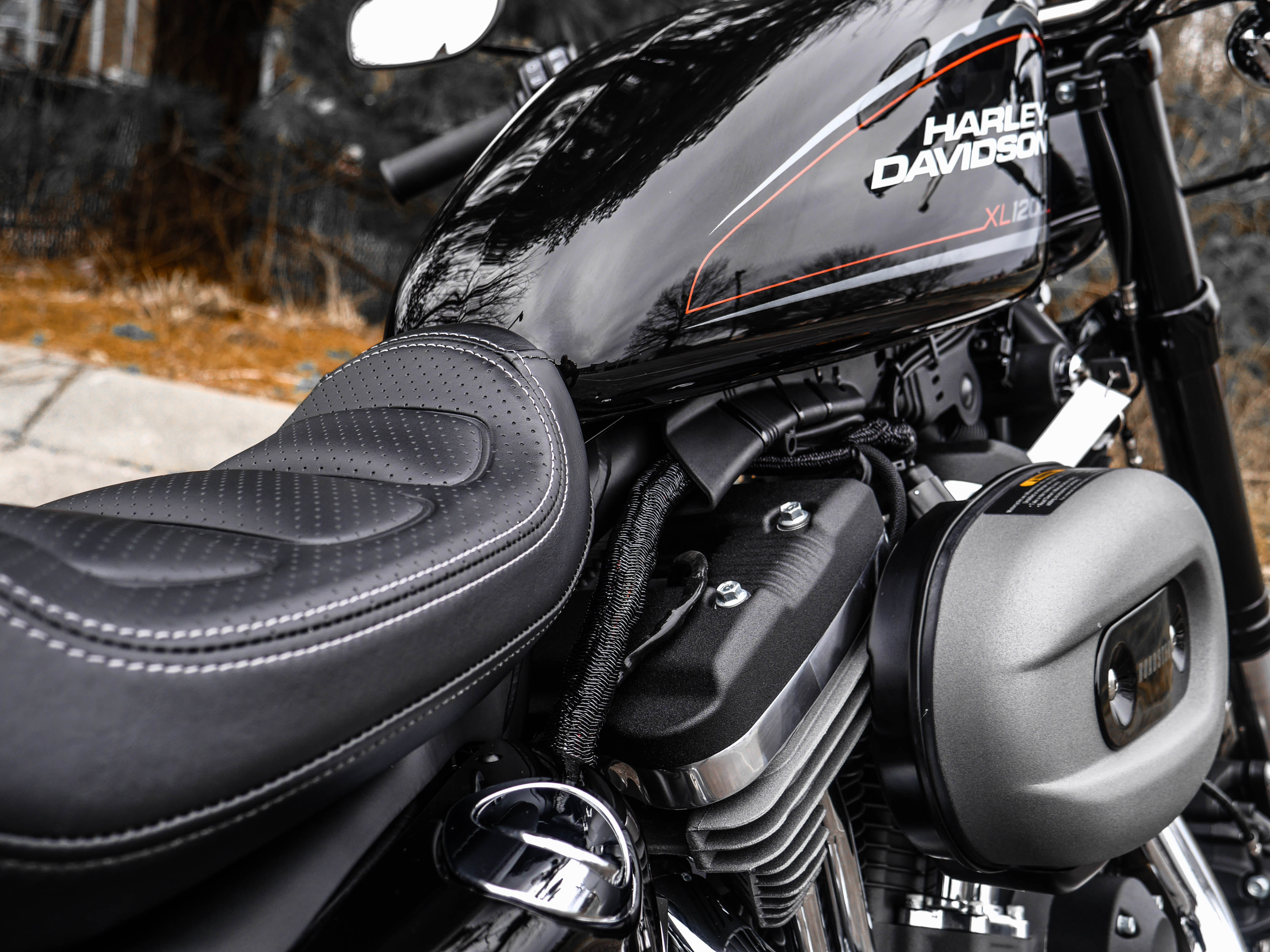New 2019 Harley-Davidson Roadster Roadster