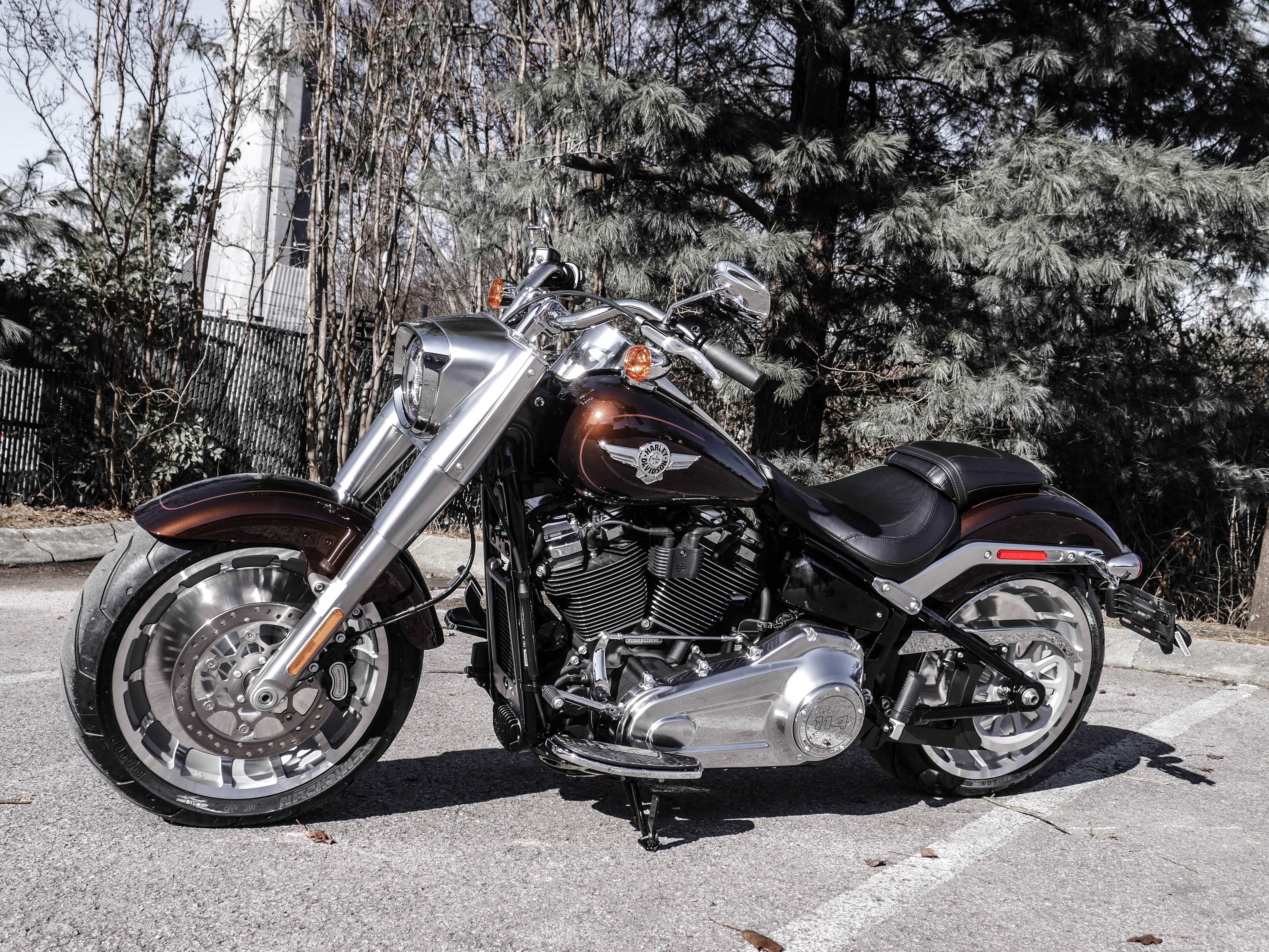New 2019 Harley-Davidson Fat Boy 114 in Franklin #T032999